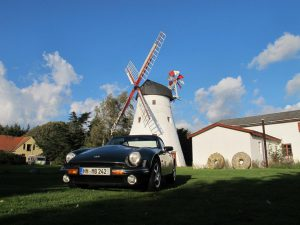 4_Holländische Windmühle nahe Pedersker